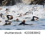 triathlon iron men in swimming... | Shutterstock . vector #423383842
