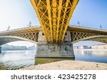 special perspective view of... | Shutterstock . vector #423425278