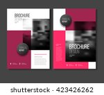 business presentation with...   Shutterstock .eps vector #423426262