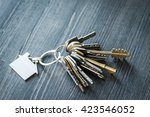 bunch of keys with house shaped ... | Shutterstock . vector #423546052