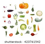 hand drawn vector vegetables ... | Shutterstock .eps vector #423761542