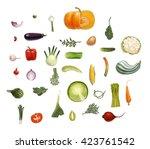 hand drawn vector vegetables ... | Shutterstock .eps vector #423761542