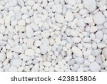 White Pebble Beach Texture