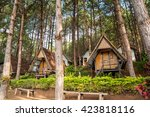lodging houses for tourists... | Shutterstock . vector #423818116