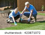 Landscape Gardeners Laying Tur...