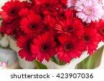 red gerbera flowers at... | Shutterstock . vector #423907036