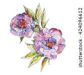 botanical illustration of peony ... | Shutterstock . vector #424096612