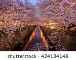 cherry blossoms along the... | Shutterstock . vector #424134148