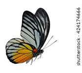 beautiful flying butterfly  the ... | Shutterstock . vector #424174666