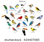Stock vector big set birds birds flying animals bird silhouette bird vector abstract art bird logo birds 424407085