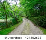 Gravel Road Driveway