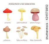 set of poisonous mushrooms. red ... | Shutterstock .eps vector #424573852
