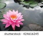 beautiful lotus flower   Shutterstock . vector #424616245