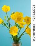 buttercups against a blue... | Shutterstock . vector #424633726