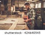 carpenter doing his job in... | Shutterstock . vector #424640545
