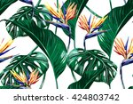 tropical flowers  jungle leaves ... | Shutterstock .eps vector #424803742