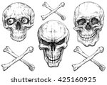 A Set Of Human Skulls With...