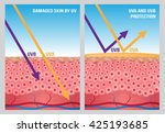 uv protection with cell skin .... | Shutterstock .eps vector #425193685