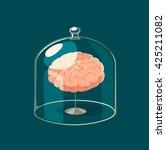 brain standard. concept vector... | Shutterstock .eps vector #425211082