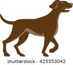 illustration of an english... | Shutterstock . vector #425353042