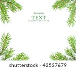 pine tree branch isolated on... | Shutterstock . vector #42537679