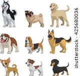 vector illustration  set of... | Shutterstock .eps vector #425680036