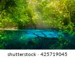 Amazing Nature  Blue Pond In...