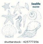 sealife collection  seahorse... | Shutterstock .eps vector #425777356
