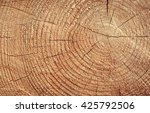old wood texture | Shutterstock . vector #425792506