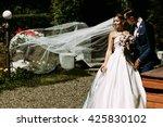 bride in the long veil in the... | Shutterstock . vector #425830102