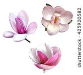 set of illustrations of... | Shutterstock . vector #425920582