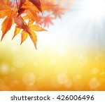 glow of autumn autumn leaves | Shutterstock . vector #426006496