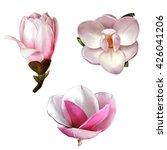 illustration of beautiful... | Shutterstock . vector #426041206