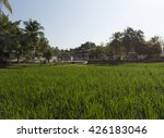 demonstration rice paddy... | Shutterstock . vector #426183046