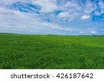 nobody outside vibrant... | Shutterstock . vector #426187642