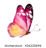 Stock photo watercolor butterfly isolated on white 426220696