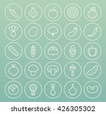 set of high quality universal... | Shutterstock .eps vector #426305302