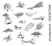 vector set of natural ... | Shutterstock .eps vector #426367468