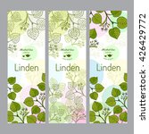 herbal tea collection. linden... | Shutterstock .eps vector #426429772