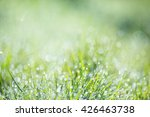 blurred green background image... | Shutterstock . vector #426463738