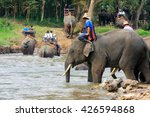chiang mai  thailand   november ... | Shutterstock . vector #426594868