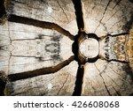 crack tree texture | Shutterstock . vector #426608068