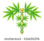 a medical marijuana plant... | Shutterstock .eps vector #426650296