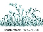 x ray image of a flower ... | Shutterstock . vector #426671218