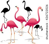 Pink Flamingos Vector...