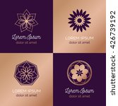 set of abstract elegant flower... | Shutterstock .eps vector #426739192