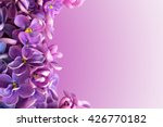 Beautiful Floral Border With...