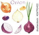 set onion. watercolor food.... | Shutterstock . vector #426791422