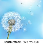 stylish nature blue background... | Shutterstock .eps vector #426798418