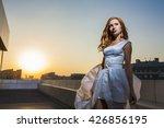 wedding holiday | Shutterstock . vector #426856195